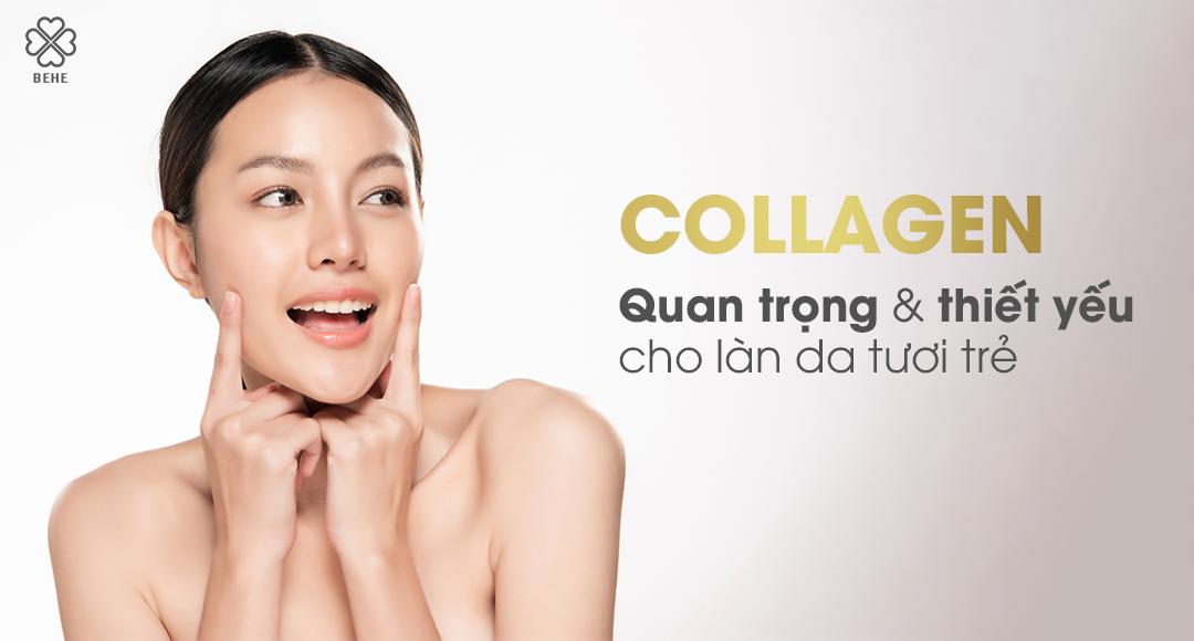 Collagen – Quan trọng và thiết yếu cho làn da tươi trẻ!